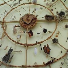 Chris Drury - 'Medicine Wheel' - objects found while walking Chris Drury, Medicine Wheel, Environmental Art, Land Art, Magick, Witchcraft, Wicca, Art Education, Nativity