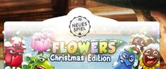 News - Flowers Weihnachtsausgabe
