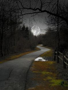 Country Road To The Moon.Oh Fly Me to the Moon, Down the Road to my Home. My Mind has Flown There Many Times Before. by araceli Beautiful Moon, Beautiful World, Beautiful Places, Beautiful Pictures, Stars Night, Shoot The Moon, Moon Pictures, Moon Magic, Night Skies