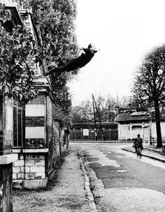 Yves Klein  Aanleiding tot performancekunst