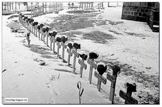 Rare unseen large pictures of German soldiers at Battle of Stalingrad