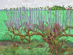David Hockney: The East Yorkshire Landscape