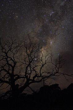 Stary sky from Wilsons Promontory, Victoria, Australia.