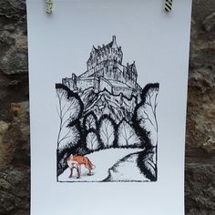 The fox passes through the gardens beneath the castle. It thinks it has gone unseen but I've spotted him!