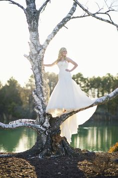 The Wedding Post of Arkansas wedding blog; I love everything about this dress!