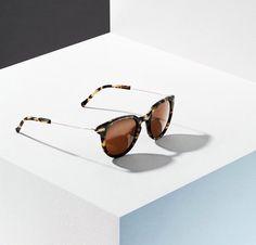 KAIBOSH   BIBLIO sunglasses in TURTLE Turtle, Sunglasses, Fashion, Moda, Turtles, Fashion Styles, Tortoise, Sunnies, Shades