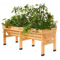 Wood Raised Garden Bed - Ideal for patio or balcony gardens. V-shaped design for deep-rooted vegetables.