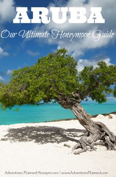 Our Ultimate Aruba Honeymoon Guide! Grab the full guide here: http://www.adventuresplanned.com/2013/03/11/aruba-one-happy-island-for-honeymoons-and-weddings/