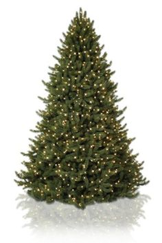 Our Vermont Signature White Spruce is modeled after nature's Picea glauca, known in New England as 'White Spruce' or as 'Canadian Spruce' across Canada. On account of the usage of our exclusive TRUE NEEDLETM foliage, you're going to be hard pressed to convince your circle of relatives and guests that it's a man-made Christmas tree. …