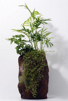 """Poliéster grande"" = this is fake plants? That's friggin PERFECT! Not a high maintenance piece of art but a cool-looking faux lol. Moss Garden, Garden Art, Water Garden, Bonsai Art, Bonsai Garden, Paludarium, Vivarium, Ikebana Sogetsu, Moss Plant"