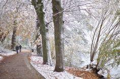 hamburg-im-winter-spaziergang-an-der-alster Minimalismus