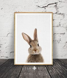 I N S T A N T - D O W N L O A D - 3 1 5  Hello, we are Lila and Lola, creators of printable wall art. Inspired by current interior design trends and our home in the mountains, our work is contemporary with an earthy twist.  Printable art is the easy and affordable way to personalise your home or office. You can print at home, at your local print shop, or upload the files to an online printing service and have your prints delivered to your door !  Enjoy 30% saving when you purchase 3 or more…