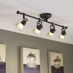 Tucana Track Lighting
