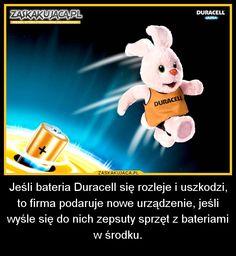 Jeśli bateria Duracell się rozleje... » Zaskakujaca.pl - Wiedza, która z pewnością Cię zaskoczy!