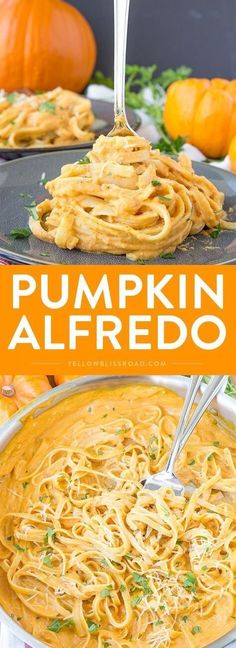 Pumpkin Alfredo - A perfect fall dinner that's easy enough for a weeknight meal and you'll never miss the cream!Creamy Pumpkin Alfredo - A perfect fall dinner that's easy enough for a weeknight meal and you'll never miss the cream! New Recipes, Vegan Recipes, Cooking Recipes, Recipies, Cheap Recipes, Lunch Recipes, Crockpot Recipes, Cooking Pork, Dishes Recipes