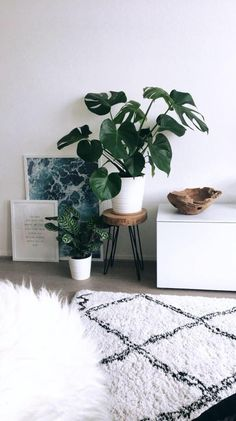 57 Boho Interior European Style Ideas That Make Your Place Look Cool - Home Decoration - Interior Design Ideas room Trending Traditional Decor Style Interior Design Living Room, Living Room Decor, Bedroom Decor, Living Room Plants Decor, Living Room Ideas, Room With Plants, House Plants Decor, Decor Room, Living Rooms
