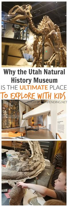 The Utah Natural History Museum is the Ultimate Place to Explore With Kids. If you want a sensory experience for your kids full of interactive learning, and plenty of things to touch and experience, then this museum is a must see if you plan to visit Utah or travel with kids. This dinosaur museum is one of the best in the nation for an authentic and hands on dinosaur experience.