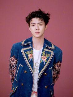 Meu sonho e ver menino Sehun arrasando como modelo! Daria muito certo ele como modelo.