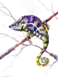 Chameleon original watercolor painting 12 X 9 in by ORIGINALONLY, $32.00