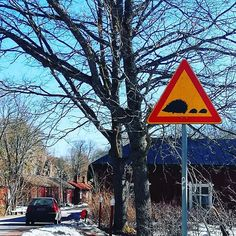 ..back to the hustle and bustle of life in Finland. The snow is melting and the hedgehogs are on the move again! 🦔🦔🦔 . . . #spring #vår #kevät #visitfinland #springisintheair #hedgehogs #finland_photolovers #roadsign #igersraseborg #instalandscape #finnish #instalike #fiskars #billnäs #forest #trees #visitraseborg #natureporn #natureshots #total_finland #ig_finland #thisisfinland #river #weareinfinland #igersfinland #finlandia #finland #visitfinland #finland_photolovers #finnishnature…