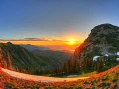 Aspen Grove Timpanogos Utah Photographic Print On Canvas  http://ift.tt/2lox1cc  #canvasprints #photographicprint #pictureoftheday #rolledcanvasprints #followback #followme #likeforlike #photooftheday #stretchedcanvas #tagforlikes #canvas #prints #gallerywrapped #rolledcanvas