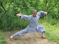 Shaolin Kung Fu with Shifu Shi Yanjun in Shaolin Temple Yunnan Action Pose Reference, Action Poses, Buddhism Philosophy, Marshal Arts, Tai Chi Qigong, Mma Workout, Shaolin Kung Fu, Martial Arts Weapons, Martial Arts Training