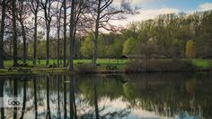 Great place for a picnic  or a reflecting view. Shot in the Bellevue State Park located in Wilmington Delaware.