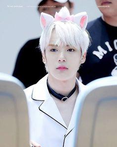 The quality of these photos tho 😍 so close yet so far - - - #kihyun #shownu #wonho #hyungwon #jooheon #minhyuk #IM #MonstaX #yookihyun #sonhyunwoo #shinhoseok #chaehyungwon #leejooheon #joohoney #leeminhyuk #minhyukie #limchangkyun #changkyun #imchangkyun #monsta_x #몬스타엑스 #exo #fffkpop #f4fkpop