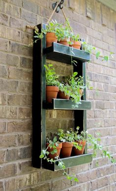 Do you want to grow herbs all year long? You can do it in your garden using hanging garden. Hanging garden is essential in a home, from supply when need herbs for cooking to beautifies your home. All of that can be achieved with hanging garden. Mason Jar Herb Garden, Herb Garden Planter, Herb Garden Pallet, Herb Garden Design, Diy Herb Garden, Herbs Garden, Pallet Garden Walls, Pallet Patio, Tomato Garden