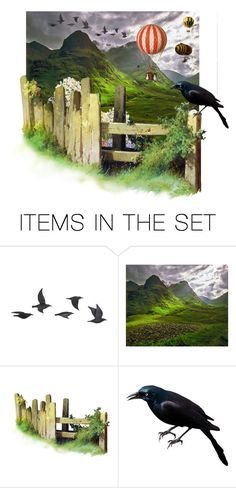 """Bird Watching"" by petalp ❤ liked on Polyvore featuring art and nature"