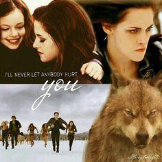 Twilight Saga Quotes, Twilight Pictures, Bella Cullen, Edward Bella, Twilight Breaking Dawn, Breaking Dawn Part 2, Jasper Twilight, Twilight Renesmee, Cool Books