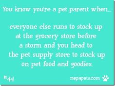 You know you're a pet parent #44 Before the storm