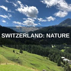 Journey through the natural beauty of Switzerland with over 3 hours of pristine ambiences exploring the nation's gorgeous countryside areas, serene forests and breathtaking mountain regions. This extensive audio collection brings together a large variety of rivers, streams and waterfalls recorded at close and distant perspectives, rural birdsong and insect activity, the distinct tones of multiple cowbells, rain and wind through leaves and even the sound of pure, unspoiled melting mountain…