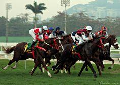 Jockey Club Brasileiro - Rio de Janeiro - Pesquisa Google