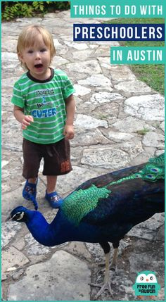100+ Fun Things to do with a Preschooler in Austin, Texas!