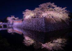 いいね!126件、コメント12件 ― nao(@na0na0.y)のInstagramアカウント: 「おほりふれくしょん🌸✨ ・ いや、お堀フレクション?🌸✨ ・ どっちでもえぇわ😂 ・ 撮りたかった桜のリフレクション🌸 夜桜で叶えました(*^◯^*) ・ ・ 皆さまとワイワイ撮影会は楽しいな♫ ・…」 Shiro, Castle, Instagram, Castles