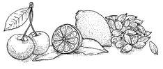 La Pierre Qui Tourne est une biscuiterie biologique et artisanale située en Picardie, qui propose un large choix de biscuits avec ou sans gluten. Vegetable Illustration, Biologique, Food Illustrations, Sans Gluten, Artisanal, Biscotti, Food Styling, Yummy Food, Color