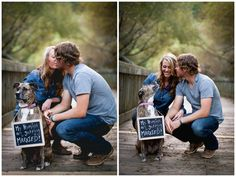 "Save the Date with dog ""My humans are getting married"" chalkboard  www.sonyaewingphotography.com"