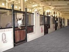 Horse Barn Stalls