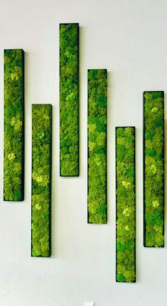 Moss Wall Art, Moss Art, House Plants Decor, Plant Decor, Deco Design, Wall Design, Deco Floral, Decoration, Diy And Crafts