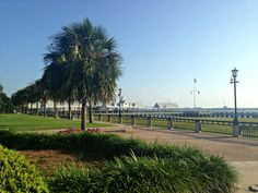 Waterfront Park in Charleston, SC