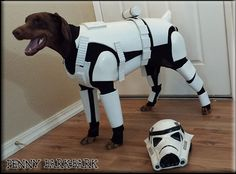 Doggy trooper for Taven! Star Wars Love, Star Wars Art, The Force Is Strong, Dog Costumes, Costume Ideas, Love Stars, Geek Girls, Chewbacca, Sci Fi