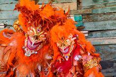 Carnaval de la Vega
