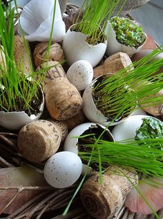 Growing grass in eggshells Hoppy Easter, Easter Eggs, Cork Crafts, Diy And Crafts, Growing Grass, Growing Strong, Flower Clipart, Easter Activities, Egg Art
