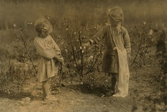 Cotton pickers, ages 4 and 5  Photo by Lewis Hines