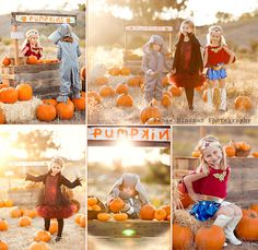 The Pumkin Patch by renee hindman, great fall mini session promo idea!