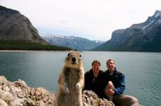 PHOTOBOMB.... I love this!!!! What a ham!!