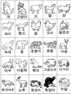 Korean Language 653866439630085098 - Coreano Source by Korean Words Learning, Korean Language Learning, Learning Spanish, How To Speak Korean, Learn Korean, South Korean Language, Japanese Language, Korean Lessons, Spanish Lessons