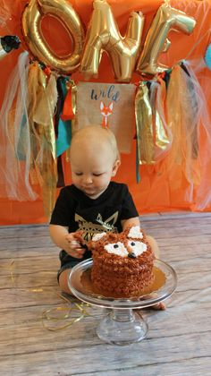Smash cake photos . fox theme first birthday !