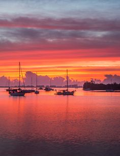 Sunrise in Coconut Grove, Florida